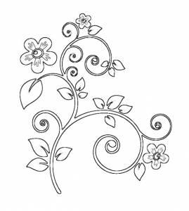 Категория растения цветы природа