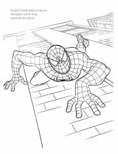 Раскраска человек паук ползет по