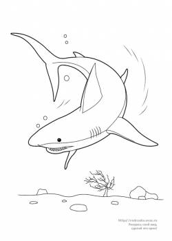 Раскраска акула на дне морском - 7 Июня 2011 - Детские ...