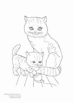 Раскраска кошка с котенком - 2 Февраля 2012 - Детские ...