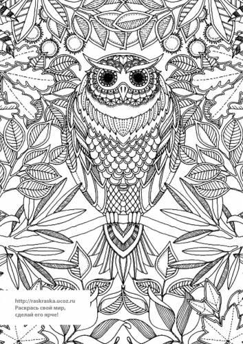Раскраска антистресс сова на ветке - 24 Марта 2016 ...