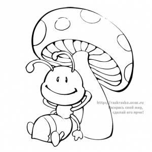Раскраска сидящий муравей под грибом - 9 Ноября 2009 ...
