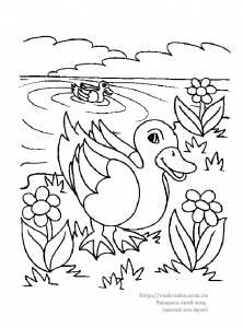 Раскраска утка - 18 Мая 2010 - Детские раскраски. Раскрась ...