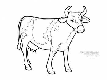 Раскраска стоящая корова - 27 Апреля 2010 - Детские ...