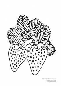Раскраски овощи, фрукты, ягоды.  Категория.  22.10.2010. Просмотров: 1826 Добавил: DimDim Дата.