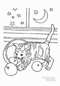 Раскраска котёнок играет с яблоками - 22 Октября 2010 ...